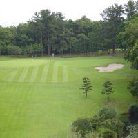 golf course 300dpi